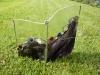Lila Lichtobjekt im Gras